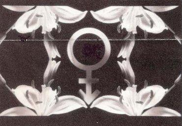 Ilppo Pohjola. P(l)ain Truth, 1993