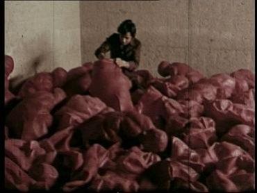 El cine en los Encuentros de Pamplona