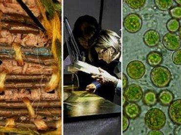 La Ciencia y el Arte