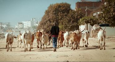 Mati Diop. Mille soleils. Film, 2013