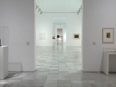 Plan de Protección de Colecciones ante Emergencias del Museo Nacional Centro de Arte Reina Sofía (PLAN PROCOERS)