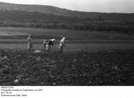 Amos Gitai. Fotografía tomada en Cisjordania, ca. 1972
