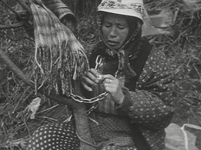 Shinsuke Ogawa. Los campesinos de la segunda fortaleza. Película, 1971