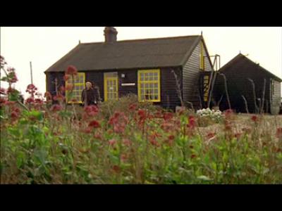 Isaac Julien. Derek. Film, 2008