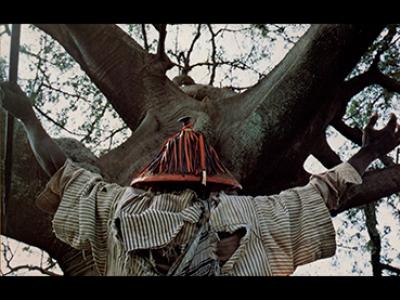 Safi Faye. Fad'jal. Película, 1979