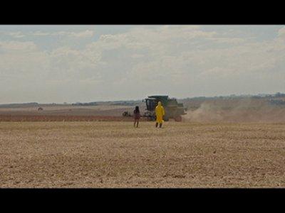Pedro Neves Marques, Semente exterminadora [Semilla exterminadora], película, 2017