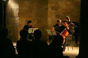 Festival de Música Internacional Isla de Rodas, Grecia. Trío Transcription Ensemble. Yorgos Kandylidis (violín), Christos Grimpas (violonchelo) y Nikolaos Zafranas (piano)