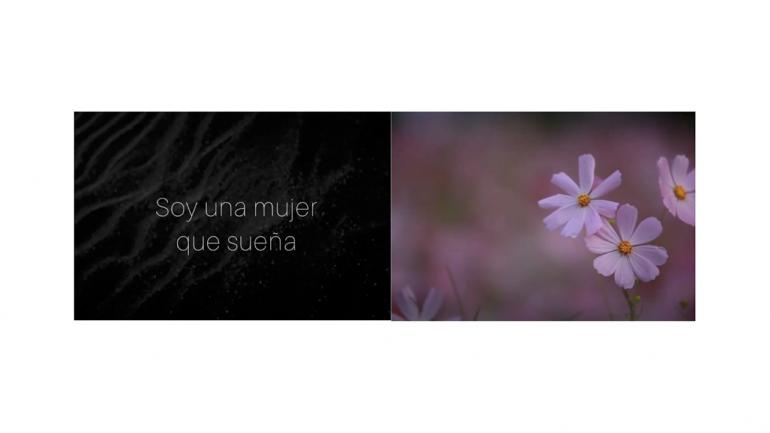 Paola Paula, untitled, 2020