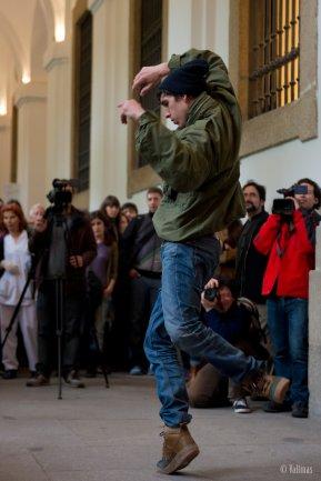 Imagen de Asaltos de la Danza