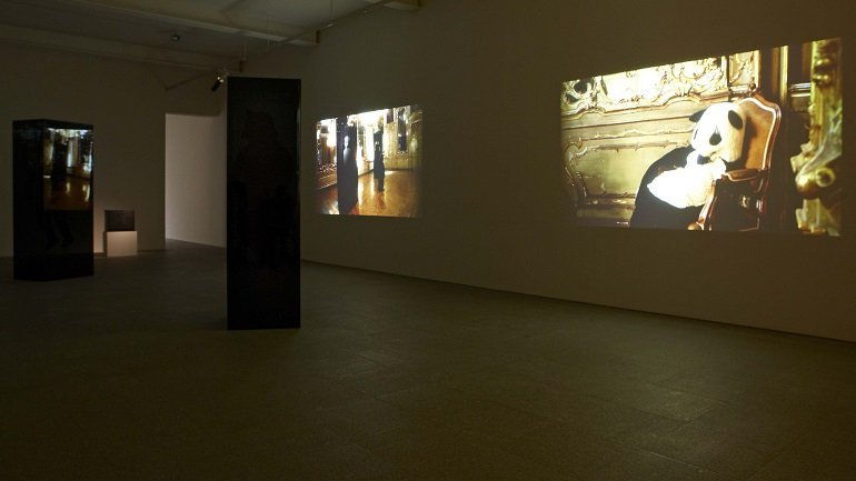 Exhibition view. Peter Fischli/David Weiss. Are Animals People?, 2009