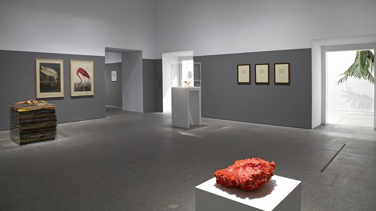 Exhibition view. Rosemarie Trockel: A Cosmos, 2012