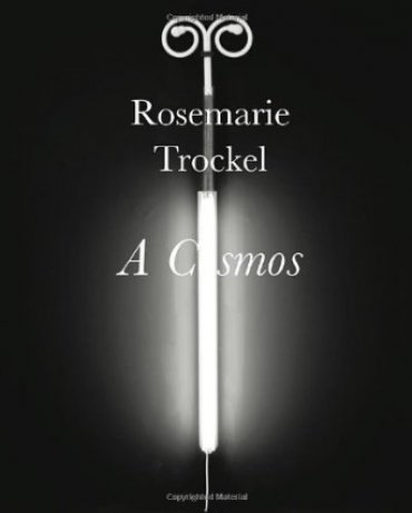 Rosemarie Trockel: a Cosmos