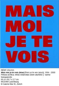 Mais moi je te vois (blue).1994-2000. Rémy Zaugg